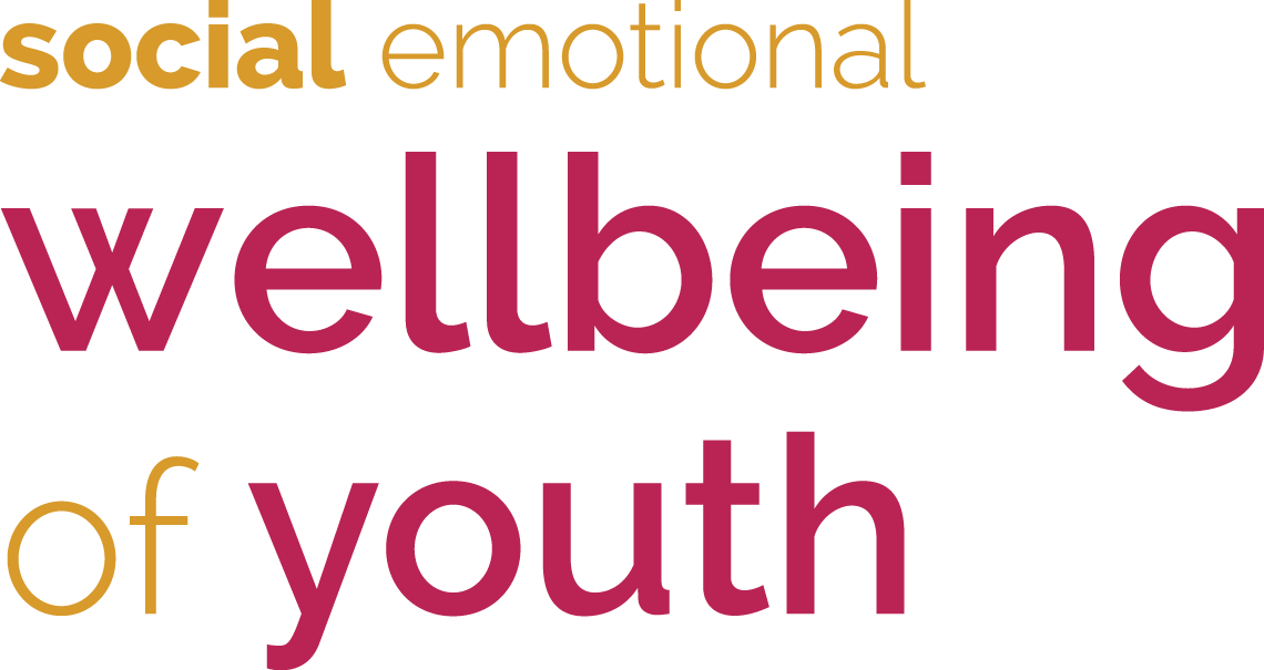 social emotional wellbeing of children